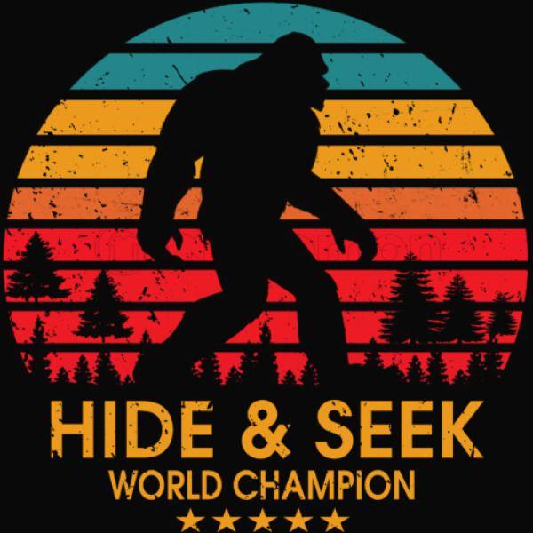 31b0b9b7 Hide and seek world Youth T-shirt   Kidozi.com
